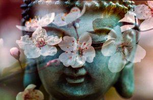 Buddha and the 7 chakras
