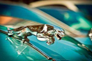 Jaguar coche de lujo 2018