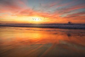 Amazing beach nature