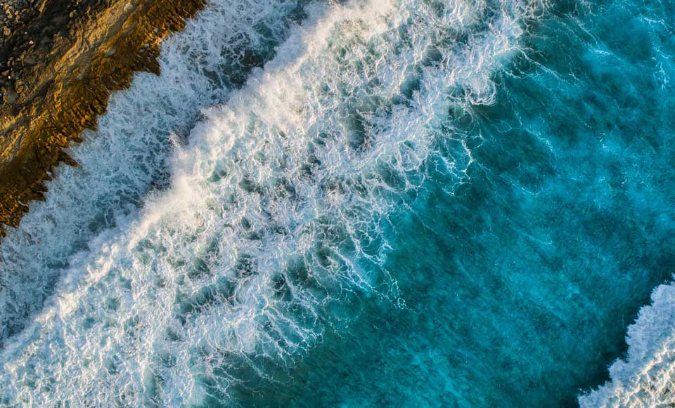Sea nature